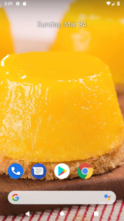 Android Q QPP1.190205.018.B3 Homescreen.png